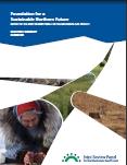 MGP-JRP-Report-Cover-20091230-117.jpg