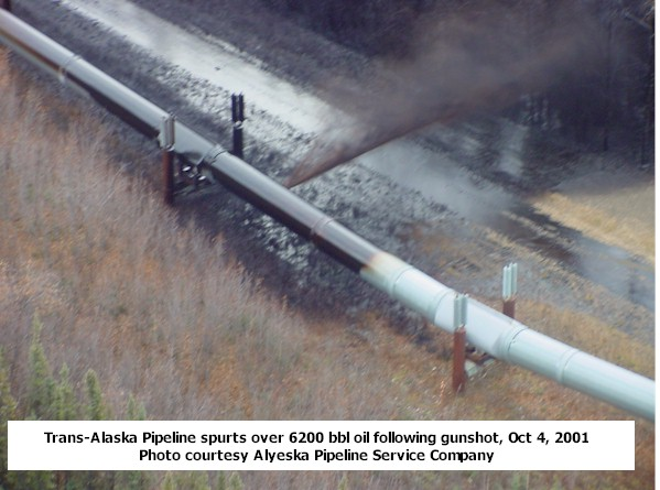 pipeline trenching technology for arctic regions essay